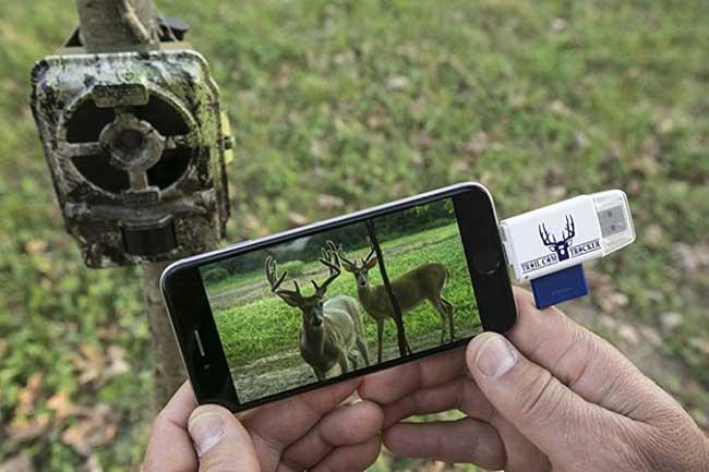choisir la bonne caméra de chasse